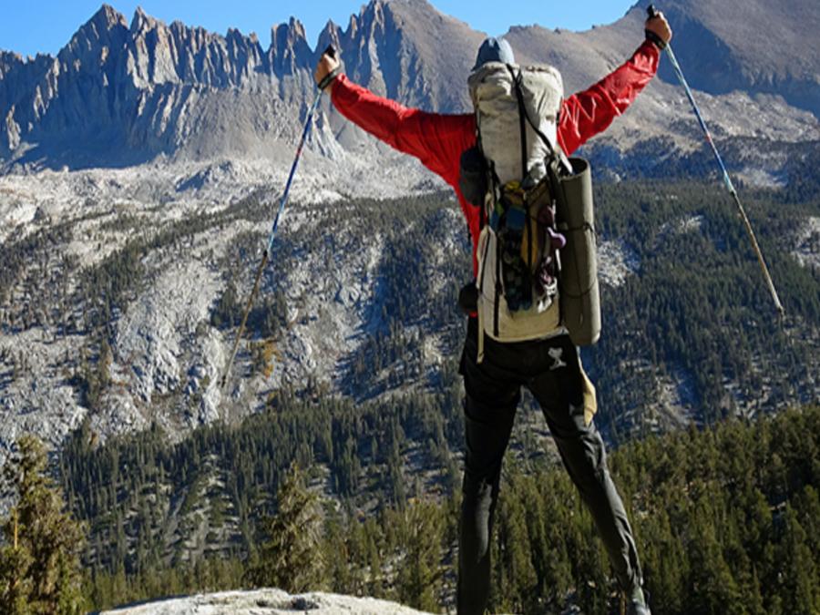 Vandringsstavar Mont Blanc